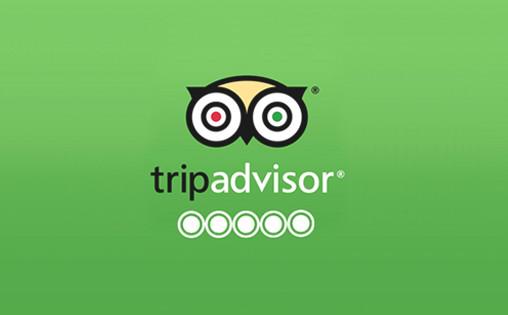 page-tripadvisor